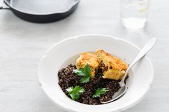 Black quinoa, oatmeal cutlets with prunes. Vegetarian dinner tab. Vegetarian dinner table. Plate with black quinoa and oatmeal cutlets with prunes on white royalty free stock photography