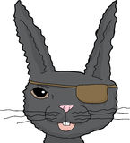 Black Rabbit with Eye Patch Royalty Free Stock Photo