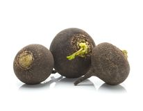 Black radish Stock Image