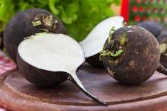 Black radish root vegetables. Black radish on wooden board Stock Images