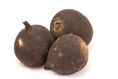 Black radish Royalty Free Stock Photos