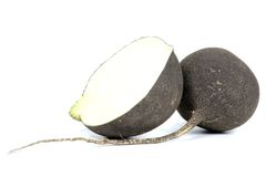 Black radish. On white background Royalty Free Stock Photo