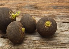 Black radish. On wooden background Royalty Free Stock Photography