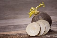 Black radish. On wooden background Stock Photo