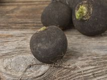 Black radish on wooden background. Black radish on wooden background Stock Photos