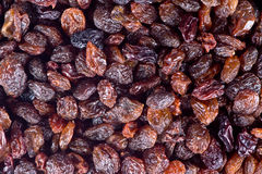 Black raisins texture Royalty Free Stock Images