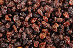 Black raisins Stock Photography