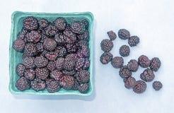 Black raspberries royalty free stock photos