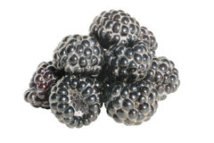 Black raspberry Royalty Free Stock Photo