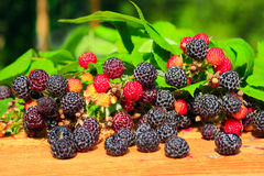 Black raspberry and leaves on the boards Royalty Free Stock Images