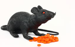 Black Rat With Drugs. A black toy rat photographed with a pile of orange pills on a white background Stock Photos