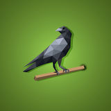 Black Raven bird vector in low polygon art Stock Image