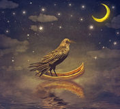 Black Raven in a boat at the river magical night Stock Photo