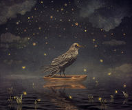 Black Raven in a boat at the river magical night Stock Photos