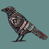 Black raven with colorful abstract pattern on body. Stock Image