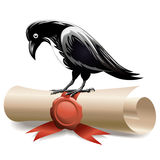 Black raven and diploma Stock Image