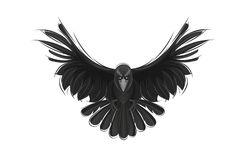 Black raven isolated on white background. Hand drawn crow Royalty Free Stock Image