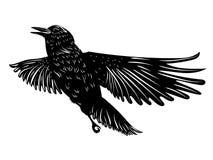 8f8d5e4da2210 Black raven silhouette. Stylized silhouette of a black raven, crow on white  background royalty
