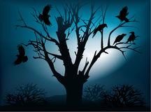 Black ravens on the tree Stock Images
