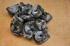 Black ravioli Royalty Free Stock Image