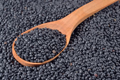 Black raw lentil in a spoon Royalty Free Stock Photography