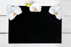 The black rectangle A4 size and a white wooden background decorated with white orchid flowers. Royalty Free Stock Image