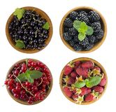 Black and red berries isolated on white. Blackberries, currants and raspberry. Collage of different fruits and berries. Berry on a Royalty Free Stock Photography