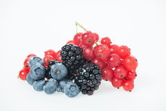 Black and Red Berries on White Royalty Free Stock Photo