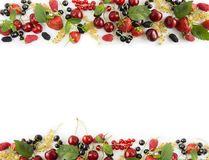 Black and red berries  on white. Ripe Mulberry, currants, raspberries, cherries and strawberries on white background. Berr. Ies and fruits with copy space for Royalty Free Stock Photography