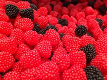 Black and Red Blackberry. The picture shows Black and Red Blackberry Stock Photo