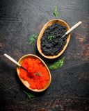 Black and red caviar in bowls with spoons and dill. On dark rustic background royalty free stock image