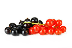 Black and red currant. Black currant and red on a white background Stock Photo