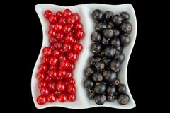 Black and red currant berries closeup. Isolated on black background royalty free stock photo