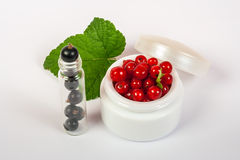 Black and red currant cosmetics Royalty Free Stock Photography