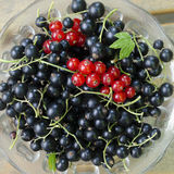 Black and red currant. In a glass bowl, top view Stock Images