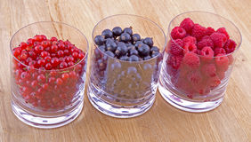 Black, red currants and raspberries in glasses. On wooden background Stock Image