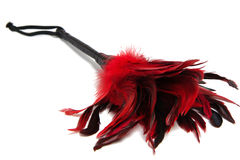 Black-and-Red Feathered fetish equipment isolated on white backg Stock Photo