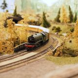 Black and Red Miniature Train Surrounded by Artificial Trees and Grass royalty free stock images
