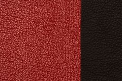 Black and red natural leather texture closeup. Royalty Free Stock Photography