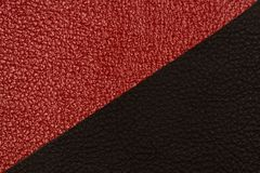 Black and red natural leather texture closeup. Royalty Free Stock Photo