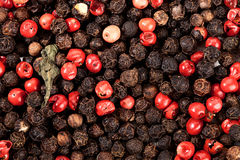Black and red peppercorns Royalty Free Stock Images