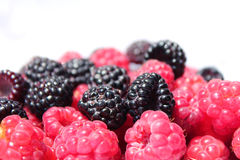 Black and red raspberries in wooden small box on the background Stock Photos