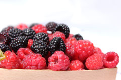 Black and red raspberries in wooden small box on the background Royalty Free Stock Image