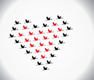 Black and red swans flying in the shape of love. Blank and red Swans flying or Geese flying or Crane Flying in the shape of heart against a white gradient sky Stock Images