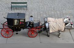 Black red tourist horse carriage - Vienna, Austria Stock Image