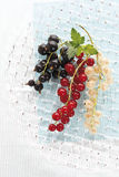 Black and red and white currants Stock Image
