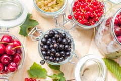 Black red white currants gooseberries cherries jars preparations Stock Image