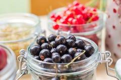 Black red white currants gooseberries cherries jars preparations Royalty Free Stock Photos