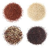 Black, red and white quinoa grains isolated on white background. Stock Images