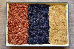 Black, red and white rice Royalty Free Stock Photography